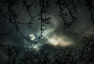 Nachtwanderung